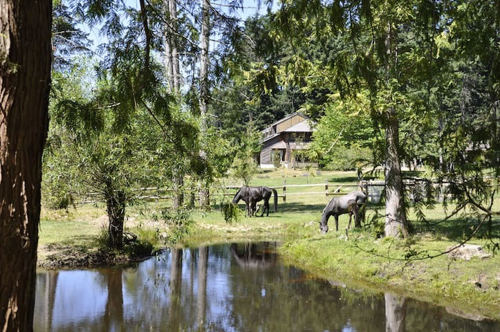 Farm in a paradise with horses - Van Anda - Rumah