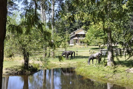 Farm in a paradise with horses - Van Anda