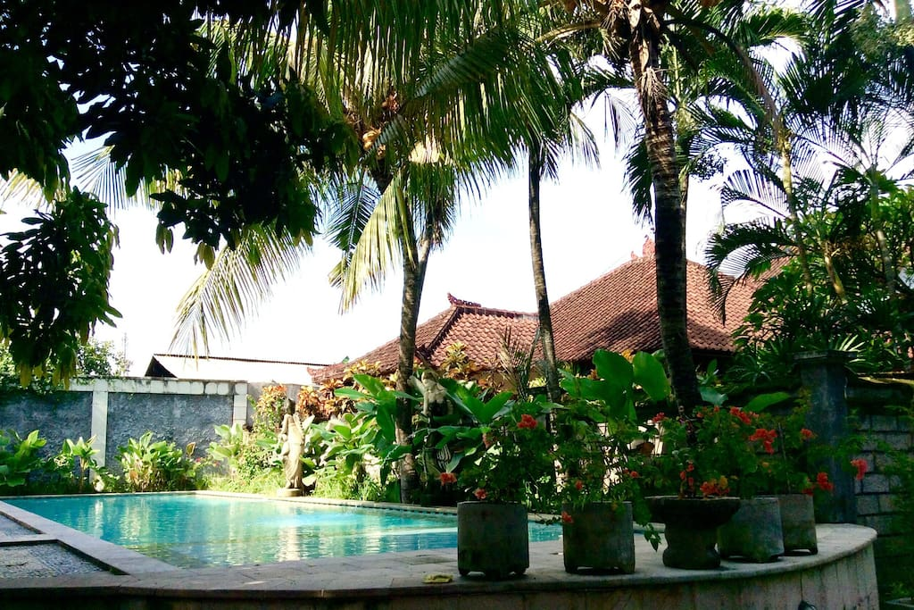 Large Swimming Pool in Complex, just 10 meters from your room. Great, relaxing tropical complex in the center of Kuta, but still quiet and secluded.
