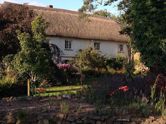 Luxury Thatched Farmhouse set in beautiful gardens - South Molton - House