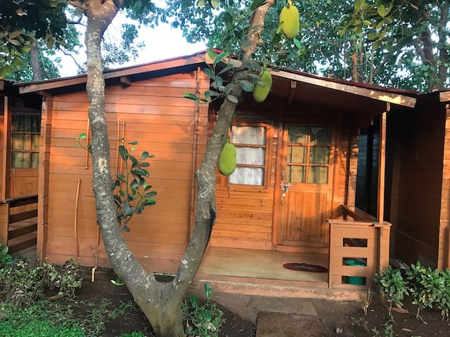 1.BAGA COTTAGE- 2 MINUTE WALK TO BAGA BEACH
