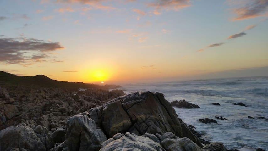 Beach Villa Oyster Bay - Oyster Bay - Hus