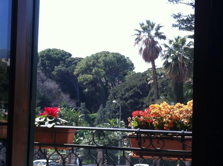 La veduta dal balcone della stanza del Sole sul Parco D'Orleans