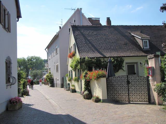 Ferienhaus Wiek am Main mit 2 SZ-6P - Veitshöchheim - Dům