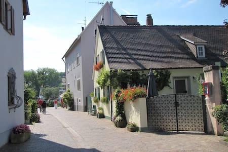Ferienhaus Wiek am Main mit 2 SZ-6P - Veitshöchheim - Dom