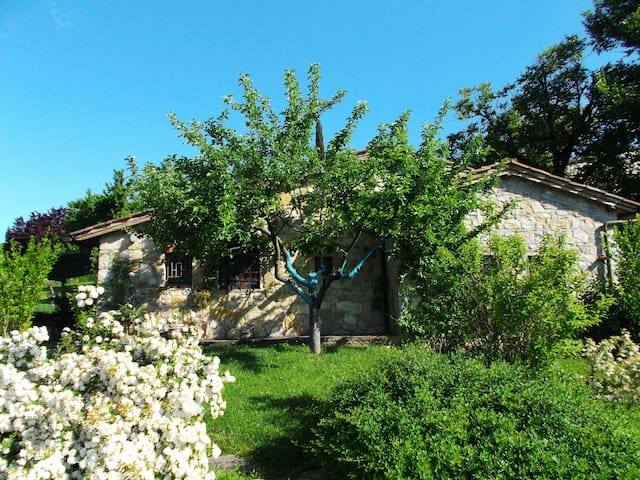 Romantic Cottage with pool - Radda In Chianti
