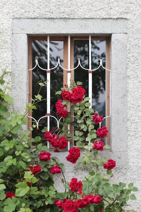 Außenansicht des Hauses
