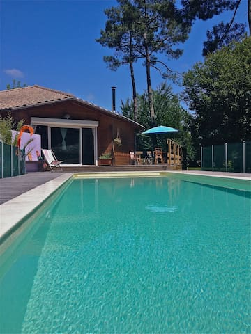 beautiful woodhouse with pool - Saint-Julien-en-Born - Casa