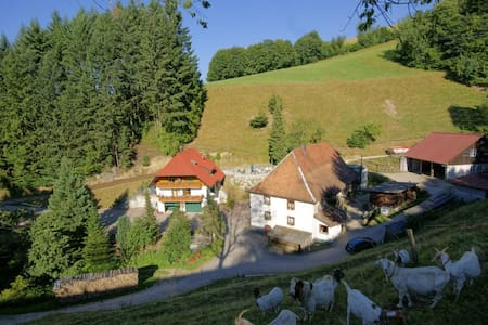 Steinmühle: Schwarzwald hautnah! - Horben - 公寓