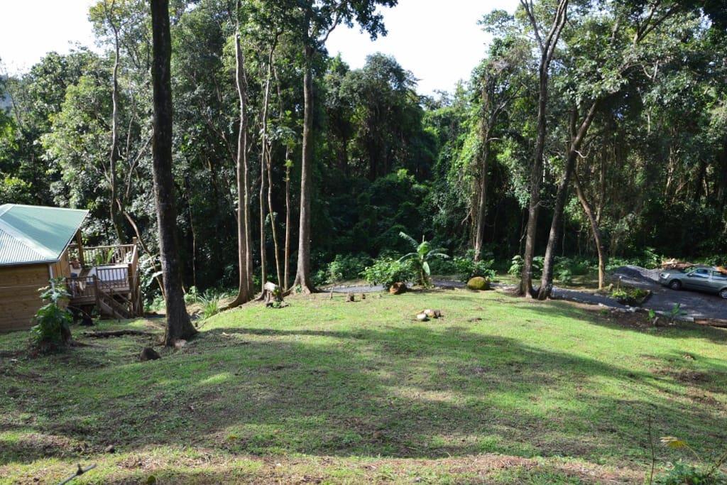 Environnement naturel autour du bungalow
