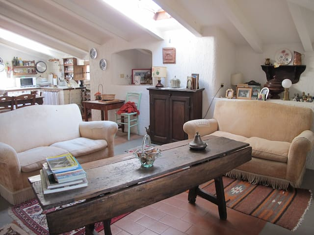 sweet tuscan attic - Montiano - Apartment
