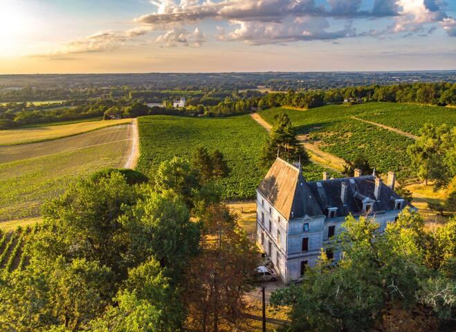 Magnfique château, belle vue de vallée d'Isle