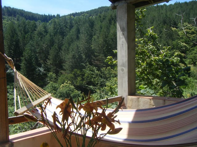 Country house Southern France  - Rocles - Byt