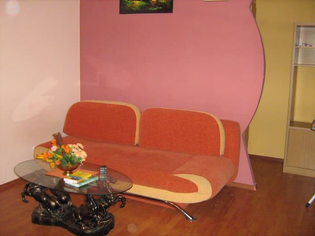 A room in Karoliniskes - Vilnius - Appartement