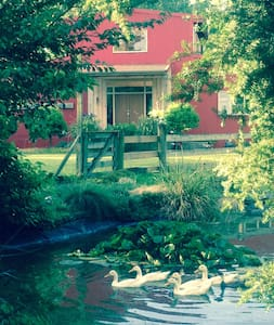 The Red Shed Homestay - Tauwhare, Cambridge - B&B