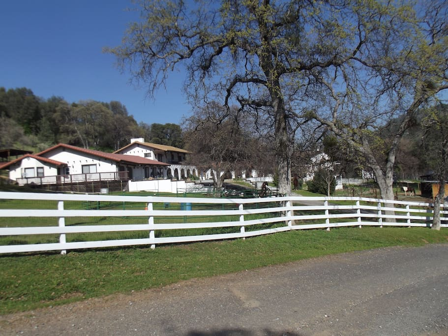 Stay with us on our beautiful private 5 acre ranch