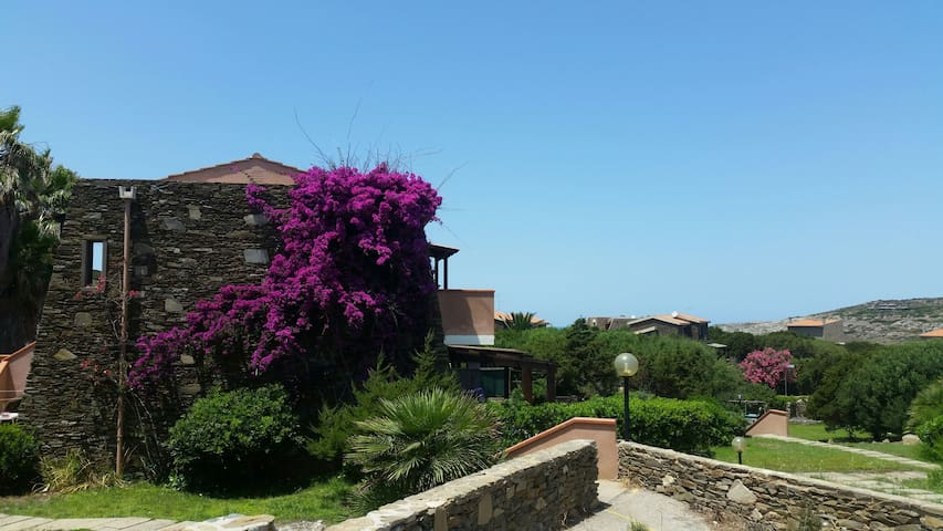 "Appartamento ""La bouganville"" - Stintino - Appartement"