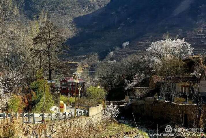 沂蒙山石崇崮原生态民宿 ,窗外就是郁郁葱葱的沂蒙山 ,夜晚听蝉叫听蛙声