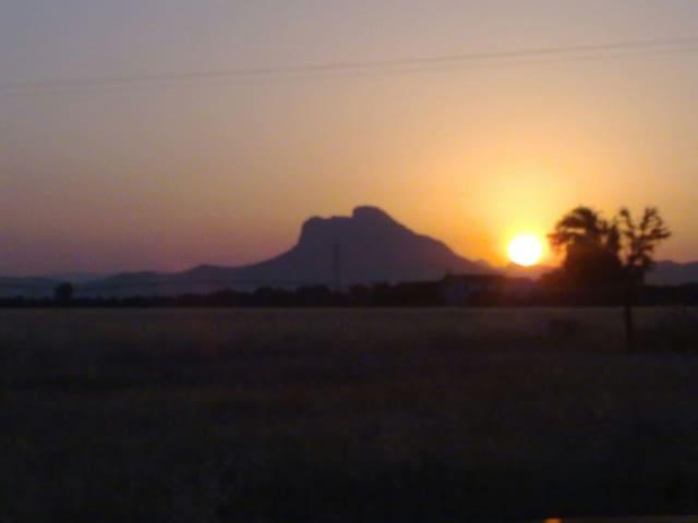 En el corazón de Andalucía - Antequera  - Daire