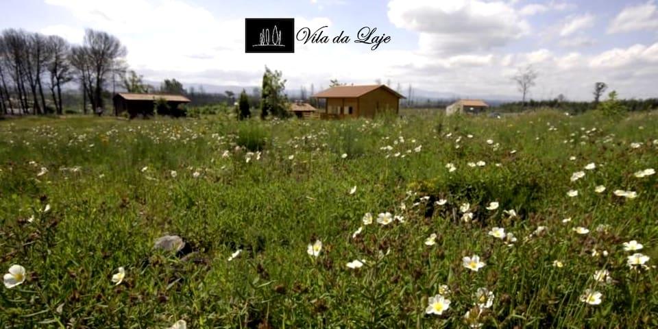Vila da Laje - Casa da Laje T1 - Serra da Estrela