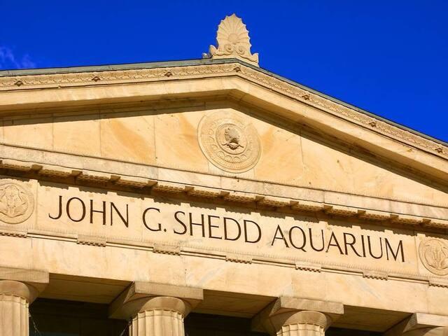 Shedd Aquarium at Museum Campus