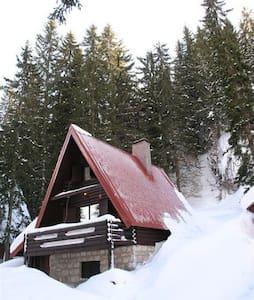 Holiday house at the ski track (S) - Jahorina