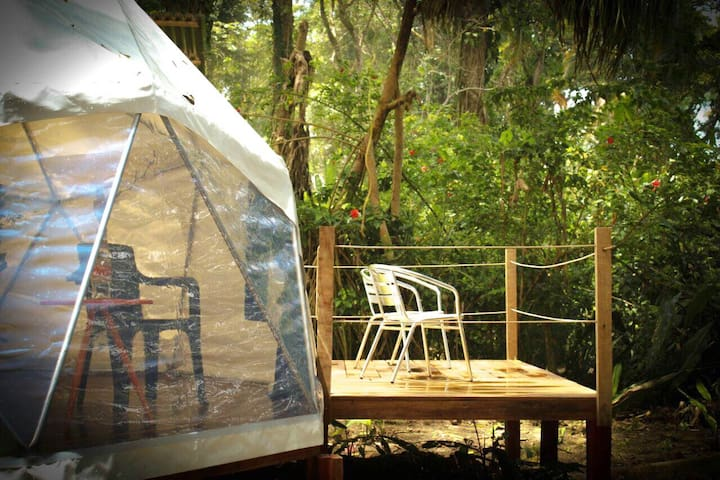 FAITH GLAMPING DOME COSTA RICA - Puerto Viejo de Talamanca - Bed & Breakfast