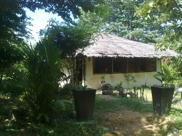 Original and charming jungle house - Ko Lanta Yai - Dům