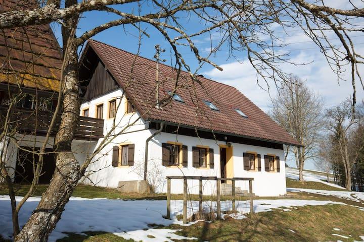 Attersee Ferienhaus - Oberhehenfeld - House