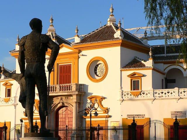 Plaza de Toros de Sevilla a 200 metros