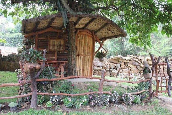 Cabaña Camping 3