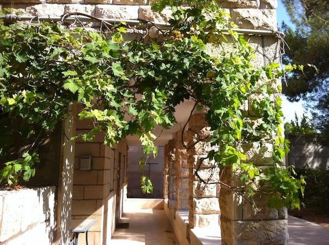 Ramat Eshkol/ Givat Hamivtar  - Jerusalem - Apartment