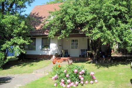 Ferienhaus mit Seeblick für bis zu 8 Personen - Mirow