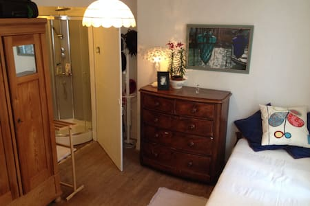 quiet single room with en suite - Pontlevoy - Bed & Breakfast