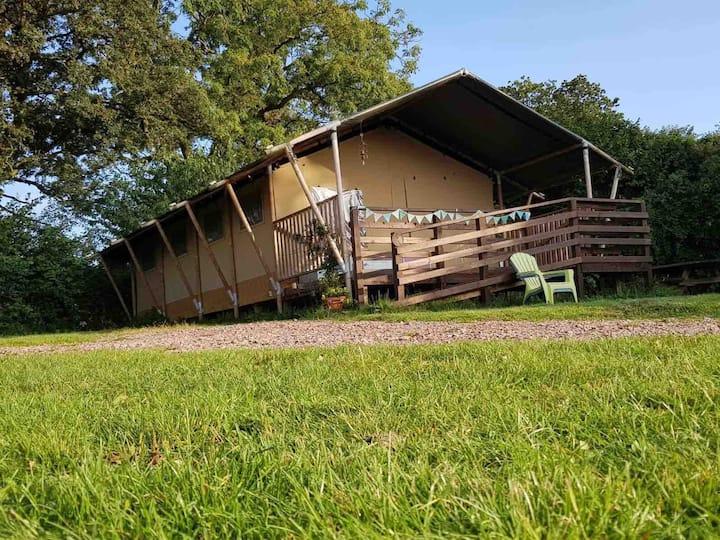 Badger Luxury Glamping Safari Tent
