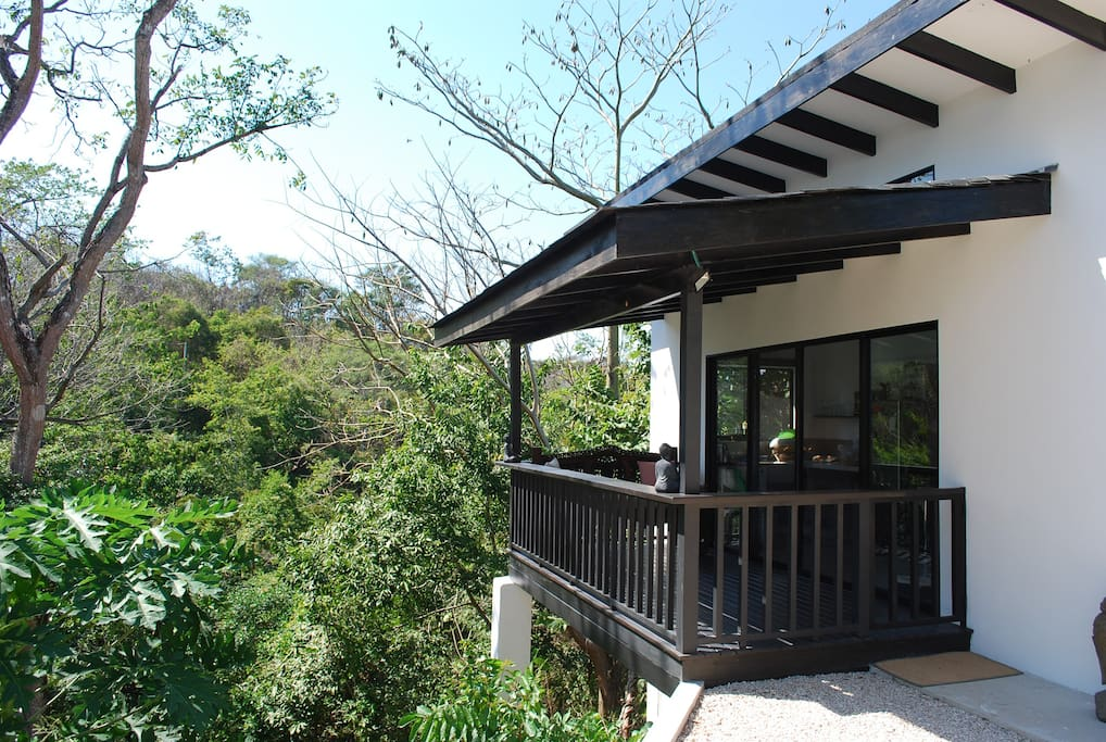Wooden balcony on stilts amidst the jungle