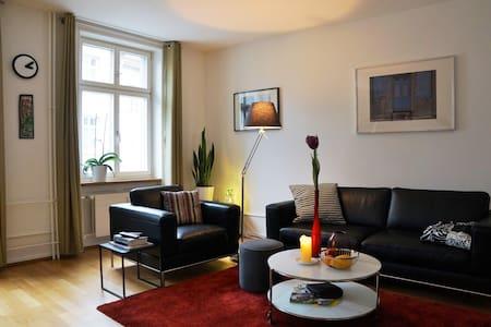 Cozy flat in old town ARTBASEL 2016 - 巴塞爾