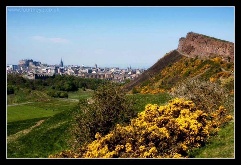 The entrance to the beautiful space of Holyrood park, including Salisbury Crags (right in pic) and Arthur's Seat is only 10 minutes walk from the apartment. The apartment is located behind the trees in the centre of photograph.