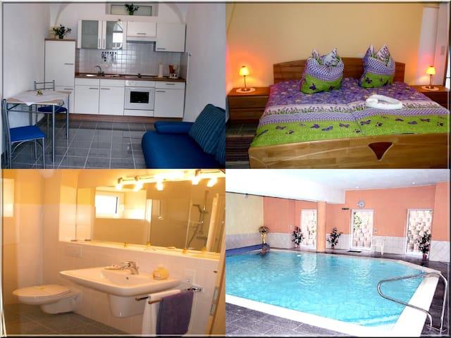 Kleiner Preis großer Komfort - Undenheim - Appartement