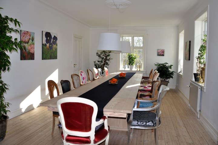 360m2 fantastic villa in Copenhagen