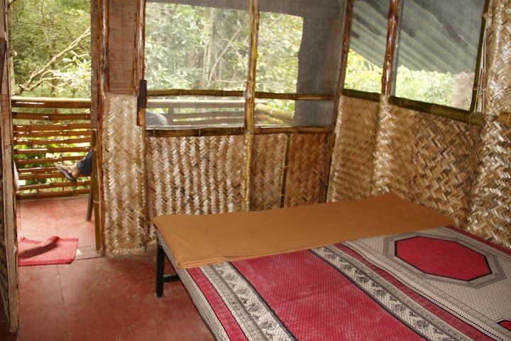Tree House Interiors at Bandipur Mudumalai