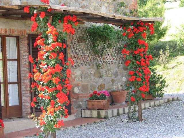 Podere La Montalla - Contignano - Wikt i opierunek