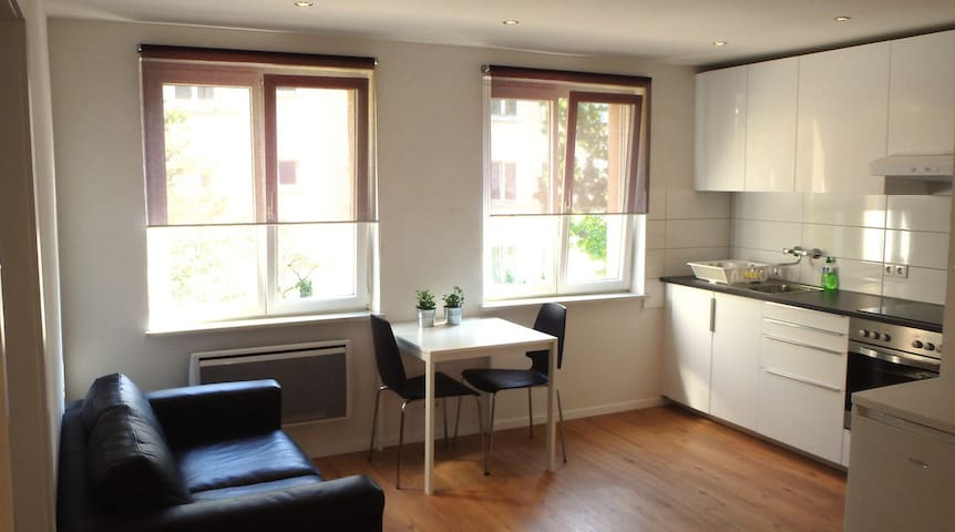 Budget apartment - newly furnished (Ref: F32R) - Bazel - Appartement