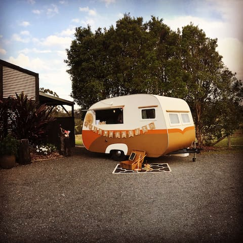 Pine Hill Vintage Van Farmstay - Cannon Creek - Camper/RV