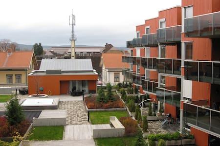 Nice appartment in city center - Lillestrøm - 公寓