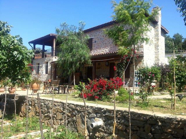 Villa Etrim - Pınarlıbelen - House