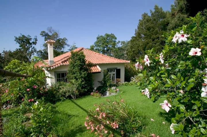 Garden Cottage on beautiful quinta near Funchal