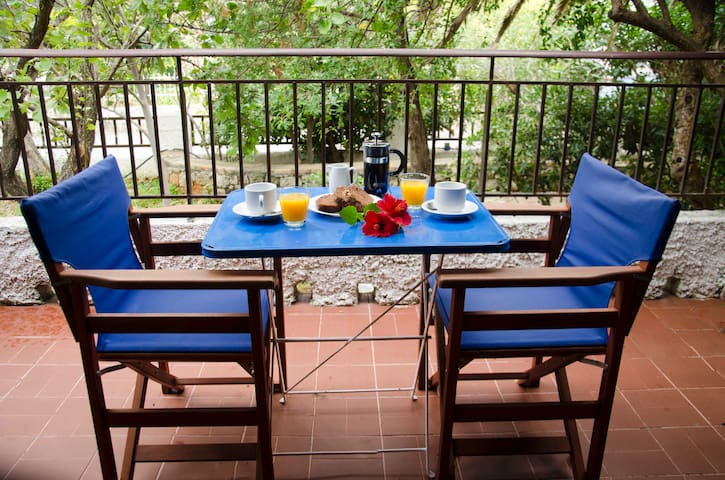 Breakfast in the shaded veranda overlooking the garden