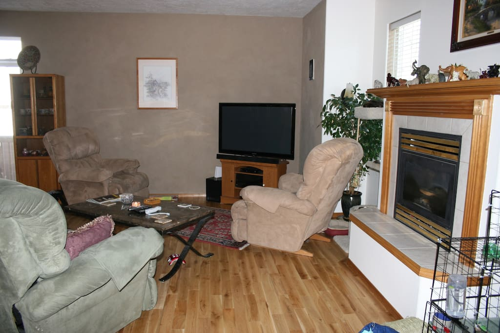 The living area with the bunny's condo in the foreground.