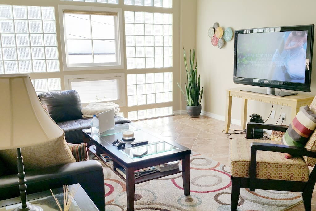 TV room with a beautiful sunny and cozy setting.